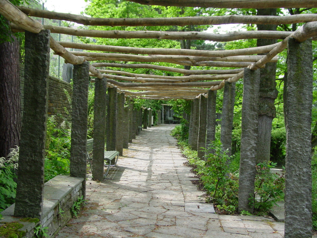 rustic garden pergola with rough beams and basic posts
