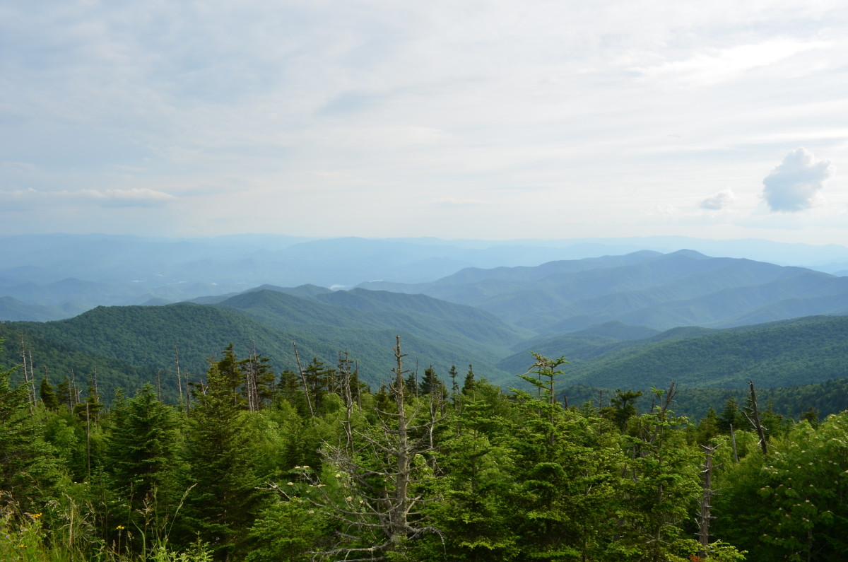 View from the top of the Smokey Mountains