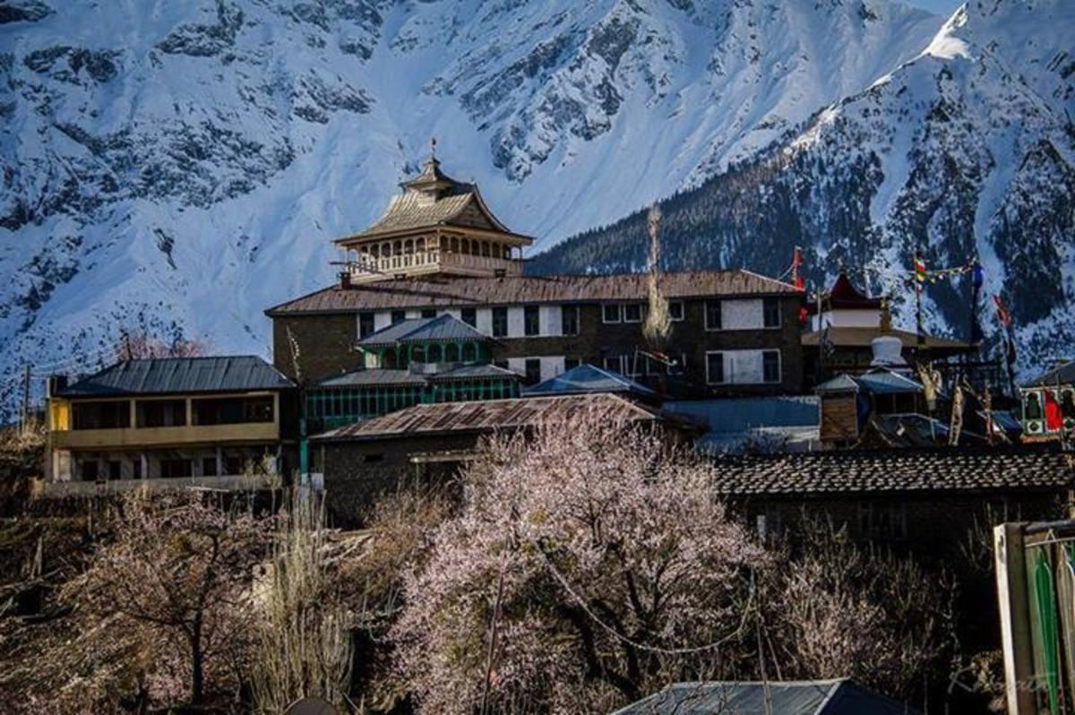 Houses at Kalpa