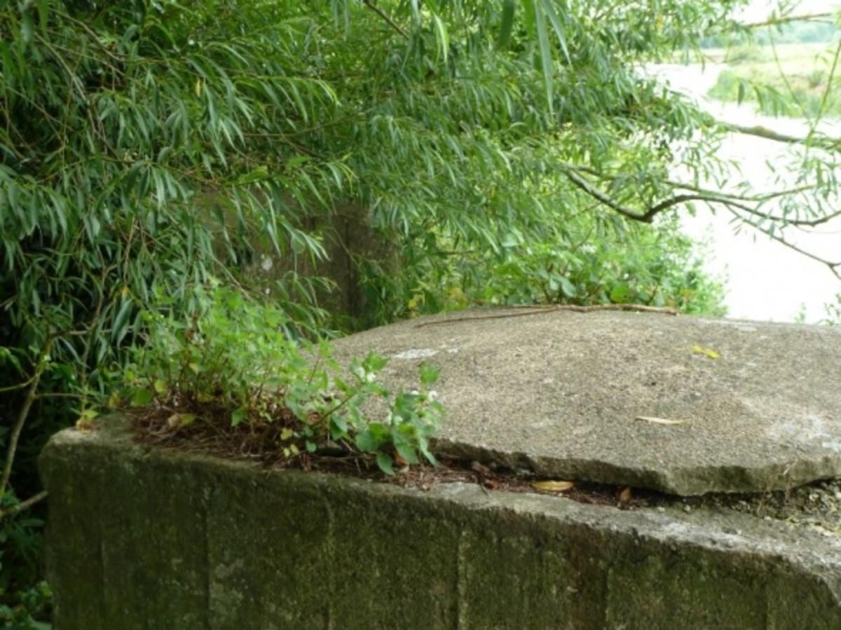 Concrete Road Blocks opposite Thames-side Cottage Pillbox between Long Wittenham & Clifton Hampden