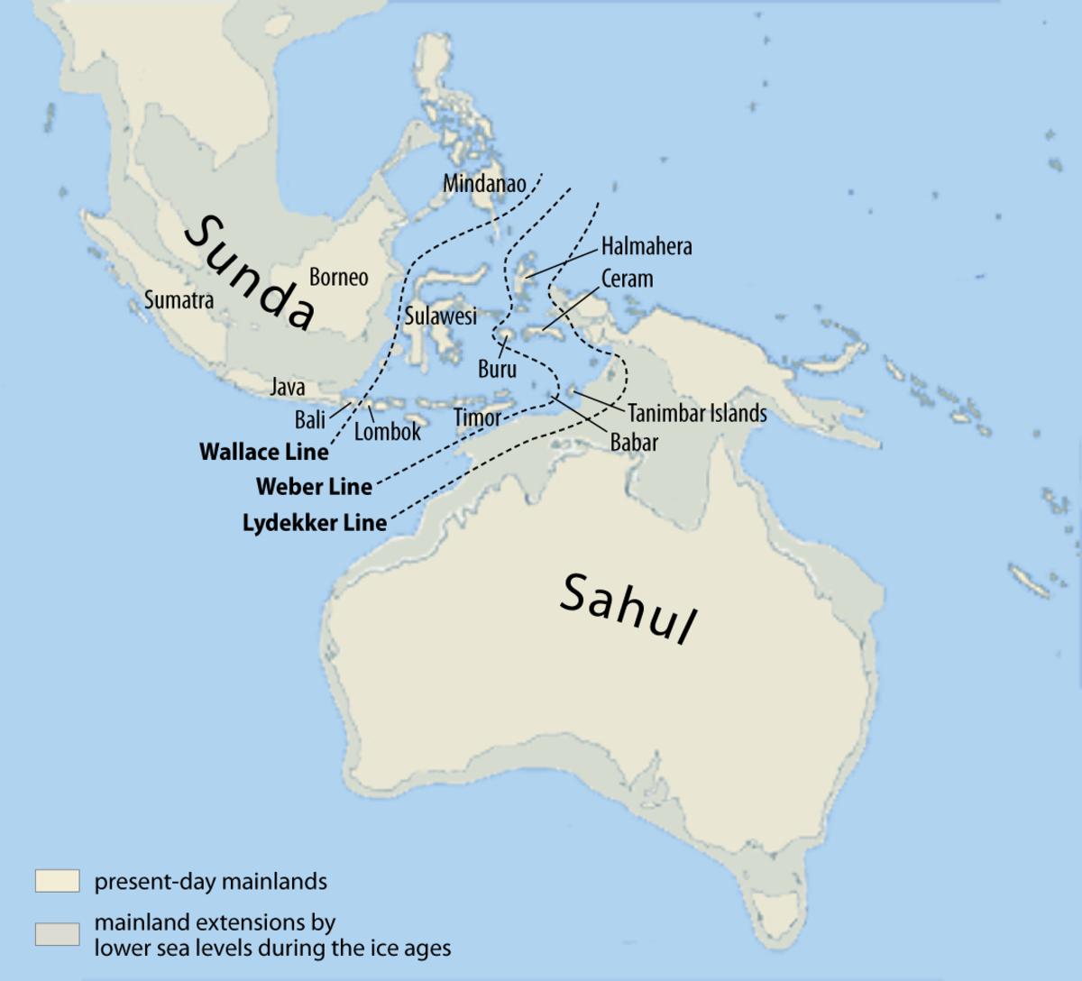 The submerged continent of Sunda