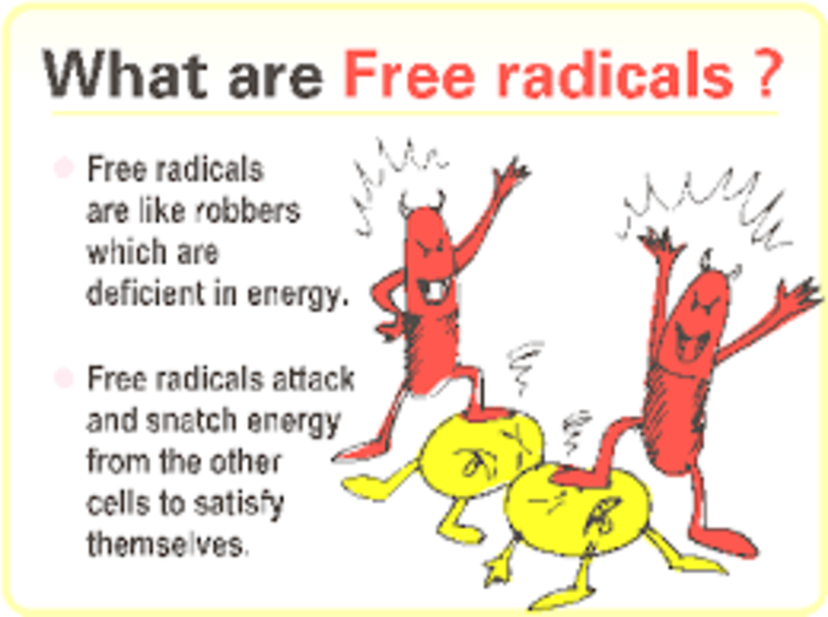 """Our bodies need the help of """"antioxidants"""" to neutralize the oxidation properties of those invading free radicals."""