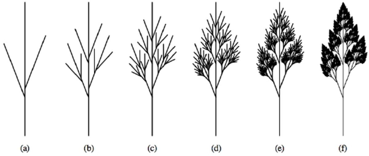 This image shows how after countless iterations from a simple asymmetrical branch a complex treelike shape is formed.