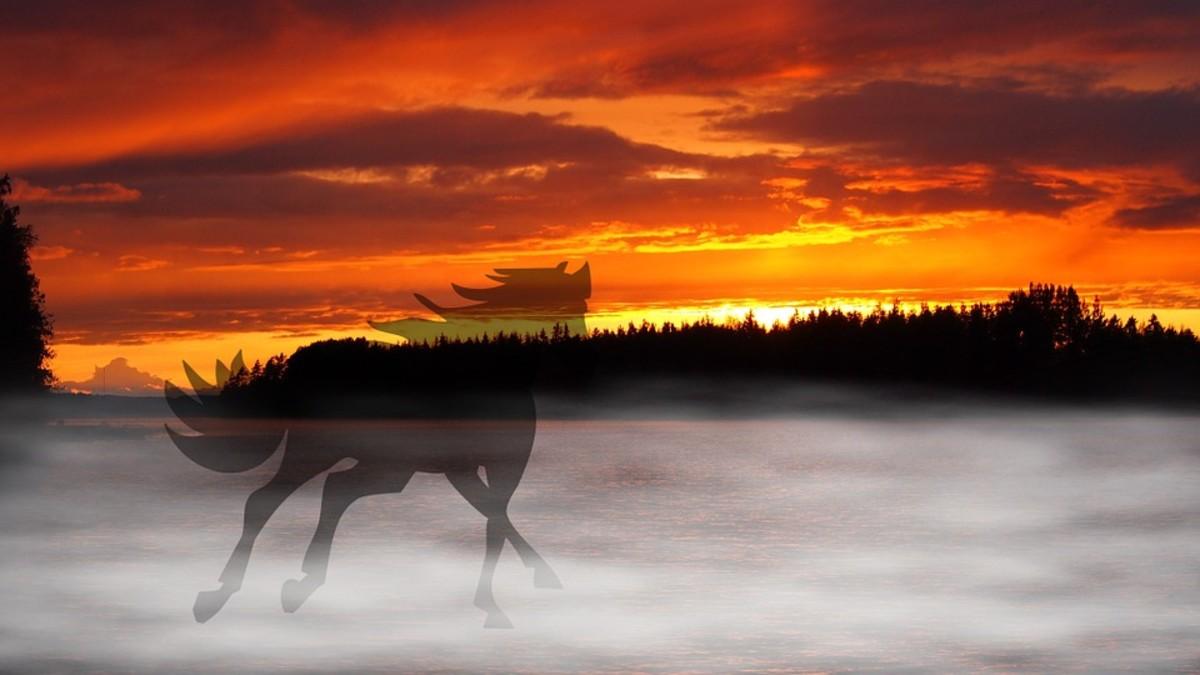 Spirit of horse.