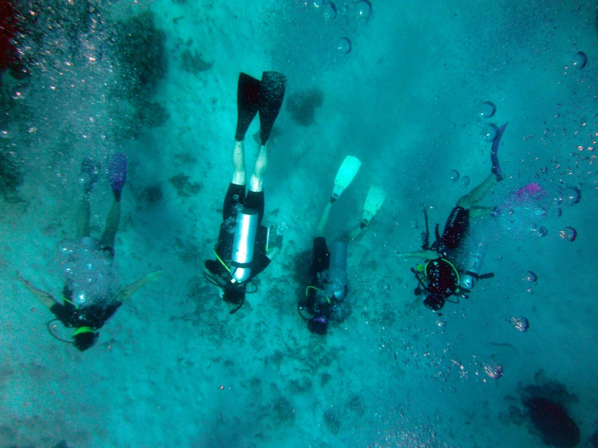 The photographer was ready to shoot as the scuba divers made their descent.