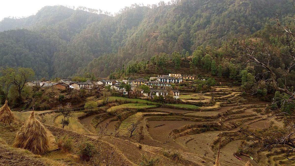 narayan-guide-society