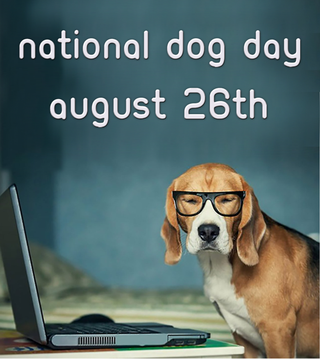 August 26th, National Dog Day