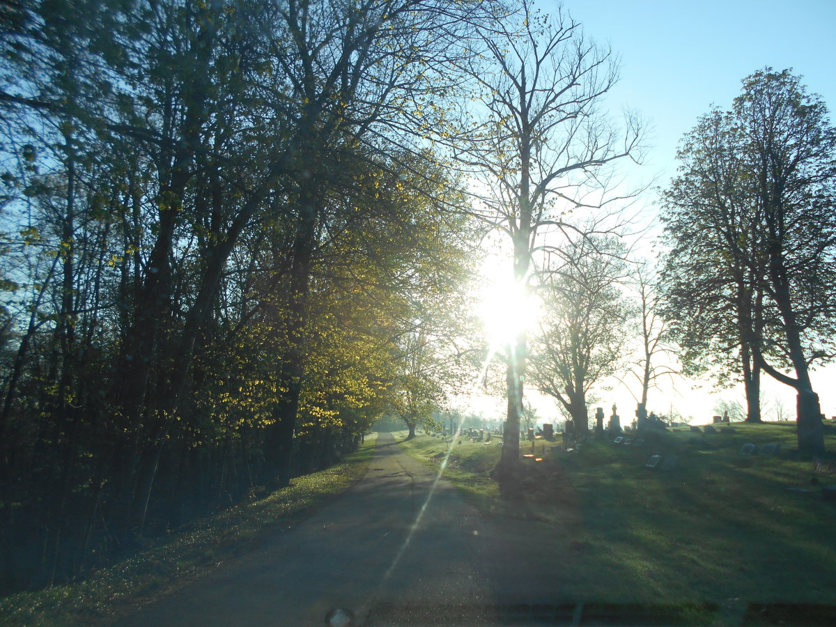 10-reasons-why-i-love-cemeteries
