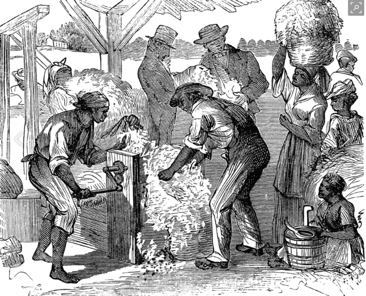 Slaves labor to operate the device that could've made slavery irrelevant.  Instead, demand for slaves increased as the ability to harvest grew.