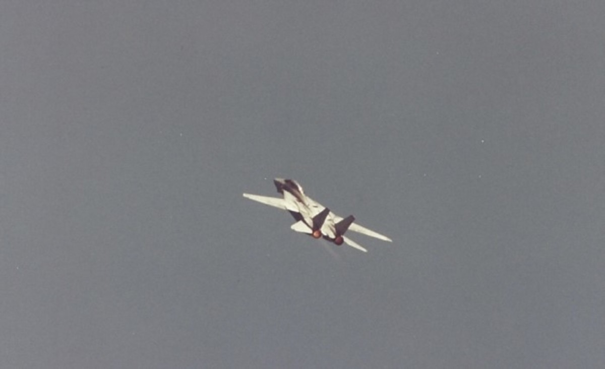 An F-14 during a flight demonstration at Andrews AFB, MD