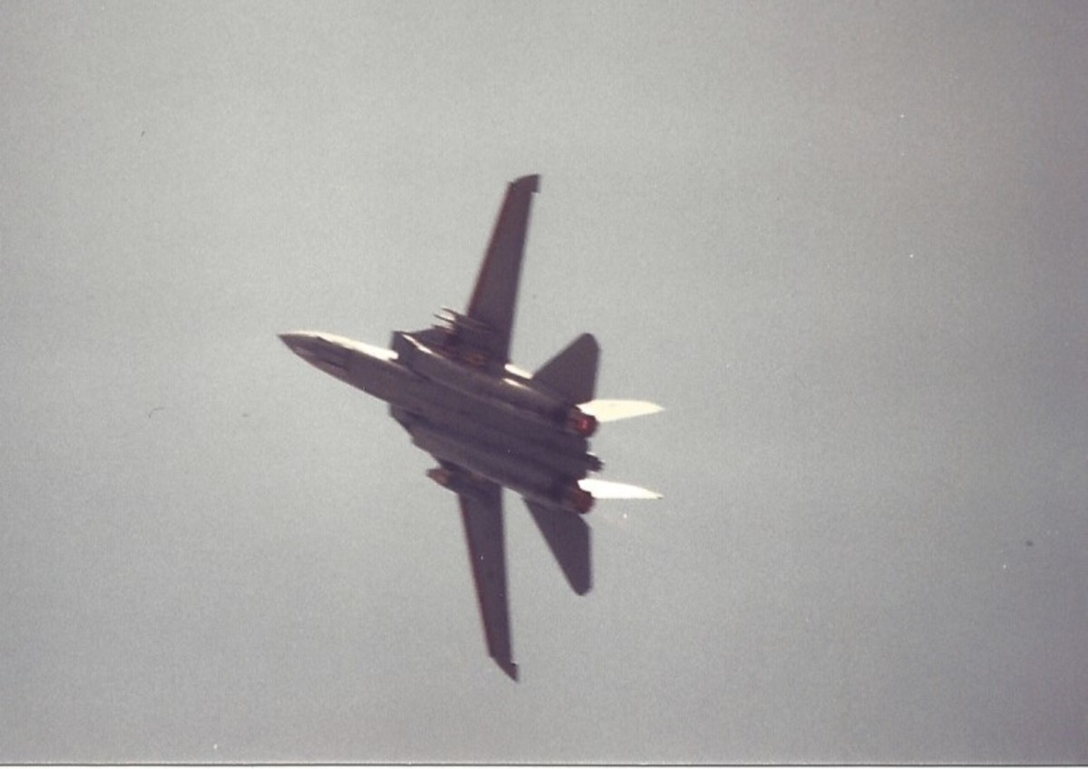 An F-14 with it wings swept forward during an aerial demonstration, Andrews ADB, MD.