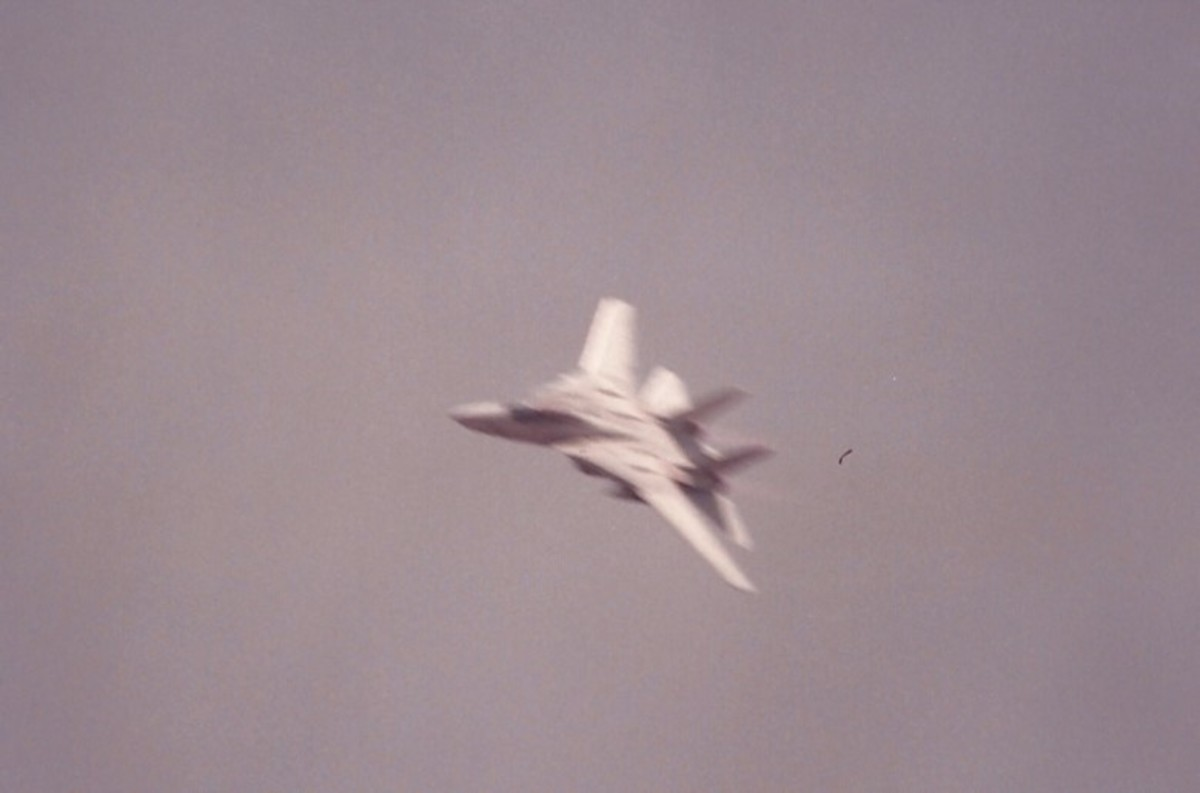 An F-14 in flight.