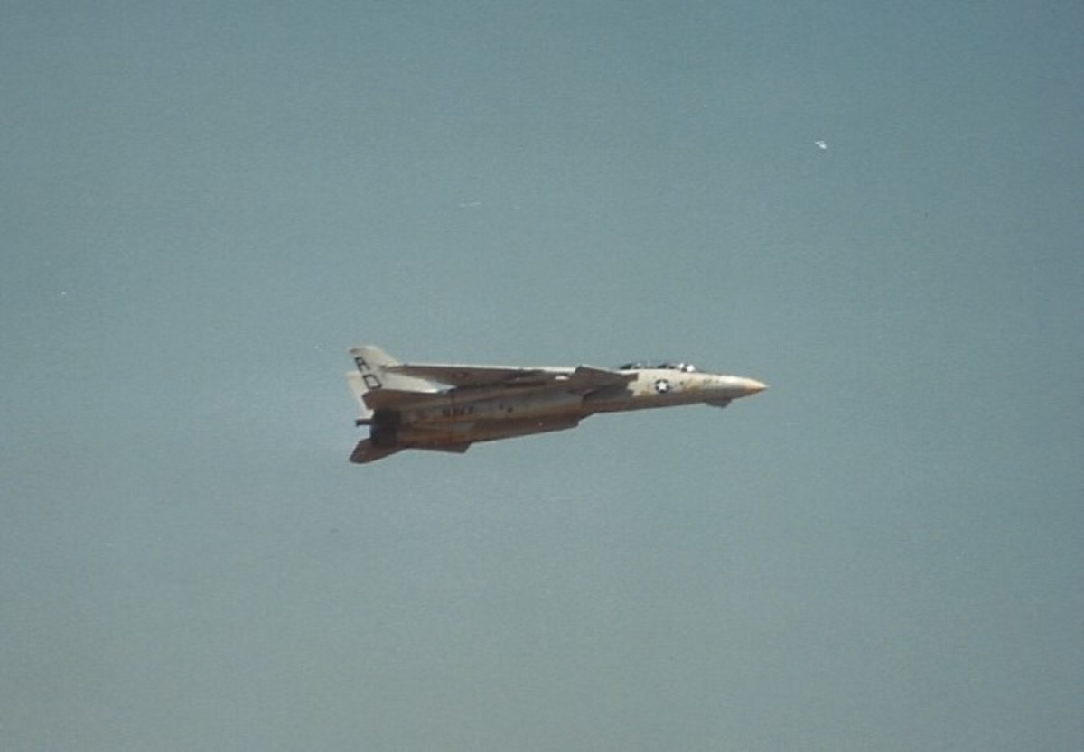 An F-14 during an aerial demonstration at Andrews AFB.