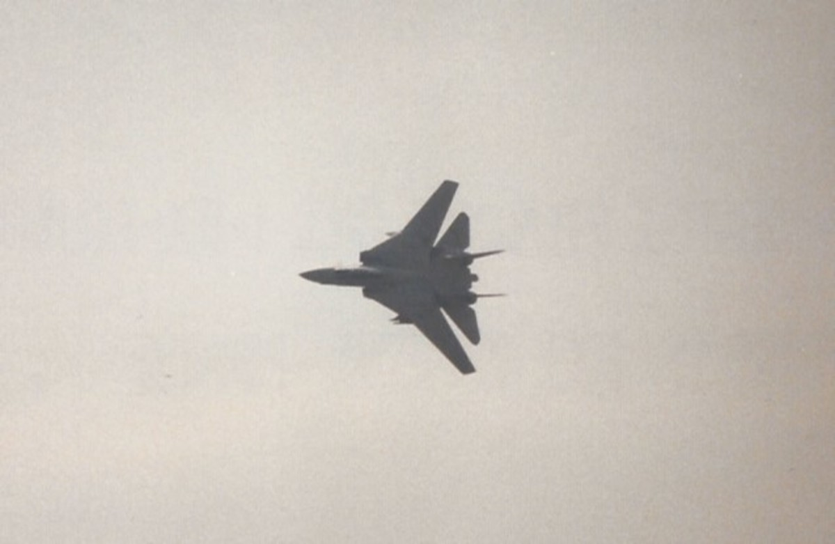An F-14 during a flight demonstration.