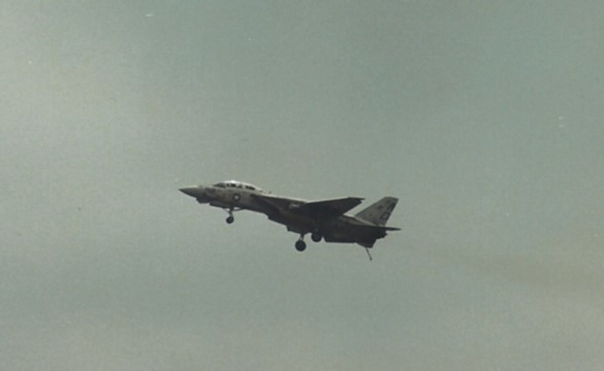 An F-14 with its wings extended and its landing gear down.