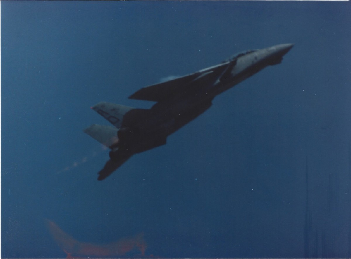 An F-14 in flight