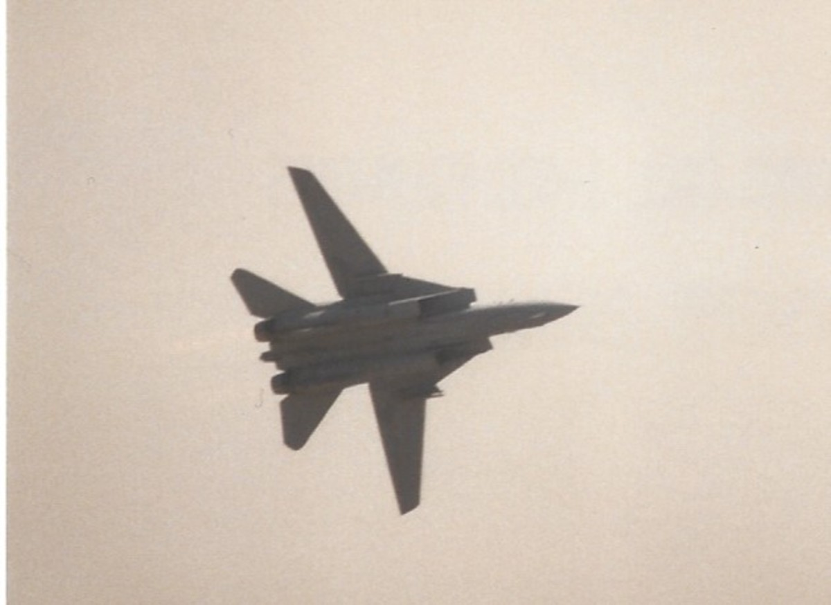 An F-14 during a flight demonstration