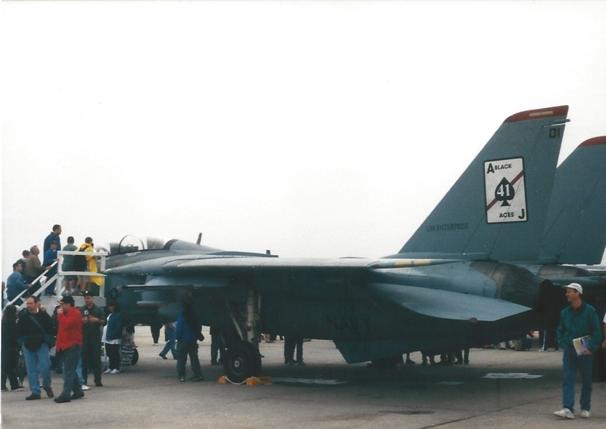 "An F-14 of the ""Black Aces"" on static display at Andrews AFB, MD."