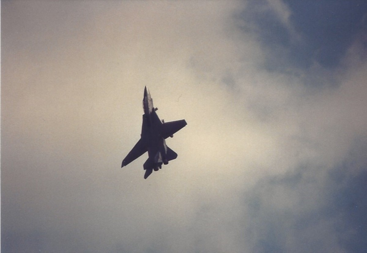 F-14 during an aerial demonstration over Andrews AFB, MD.
