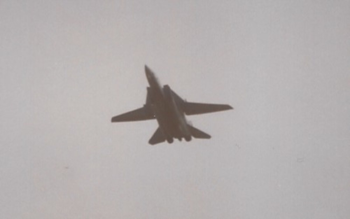 An F-14 with wings extended.