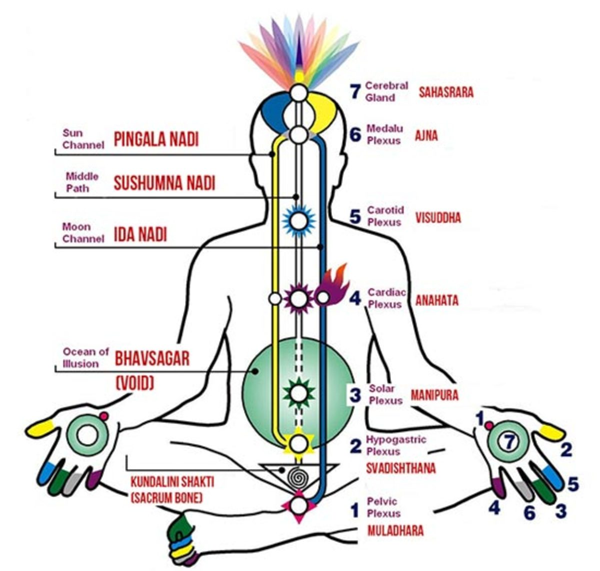 What Is the Physiology of Kundalini and Chakras and How Kundalini Became Synonyms With Supreme Consciousness?