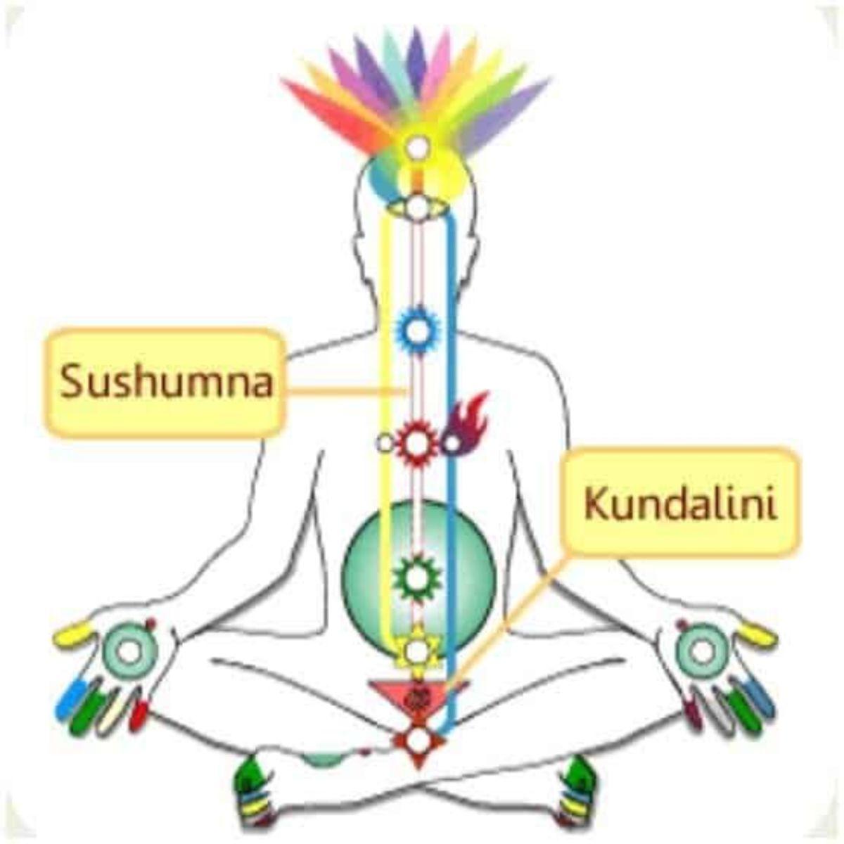 Significance of Sushumna Awakening