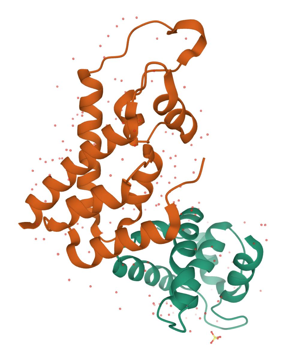 HIV-1 Gag Protein