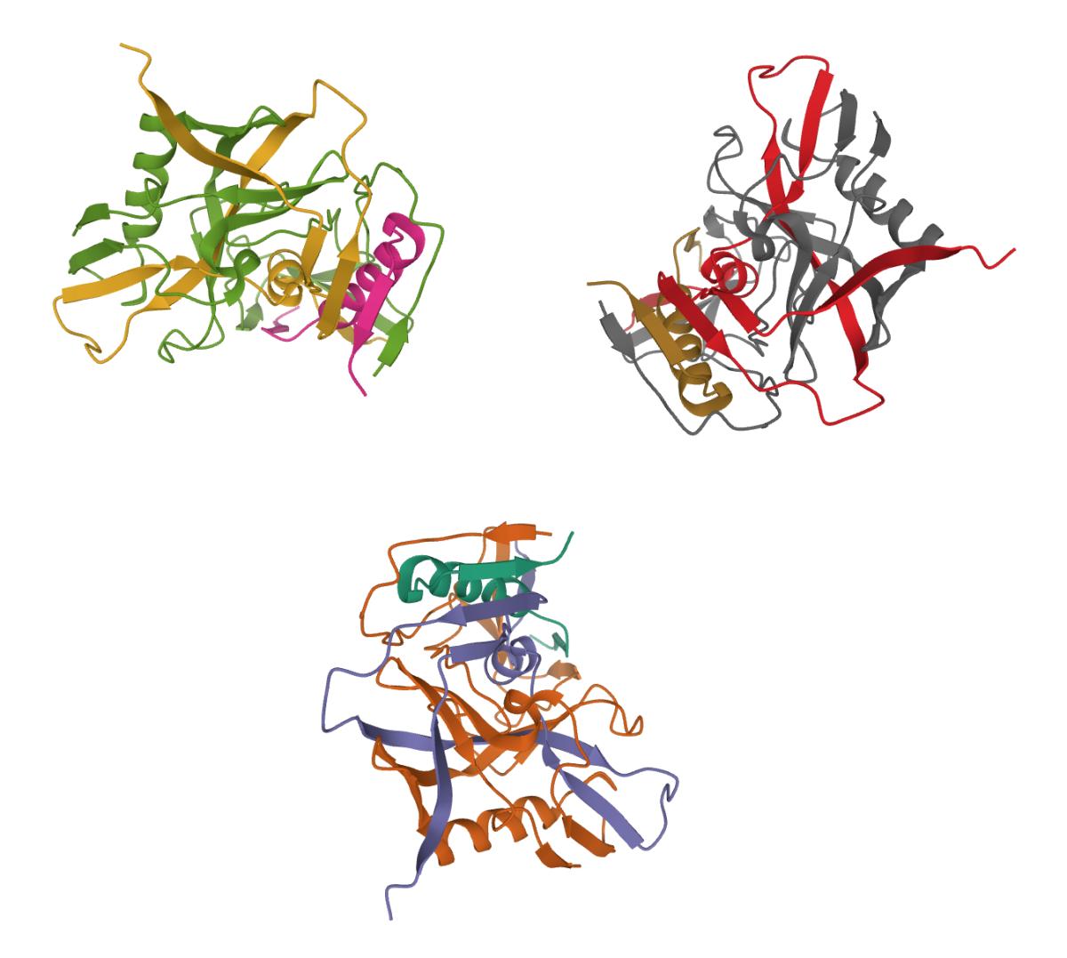 HIV-1 gp120 Protein