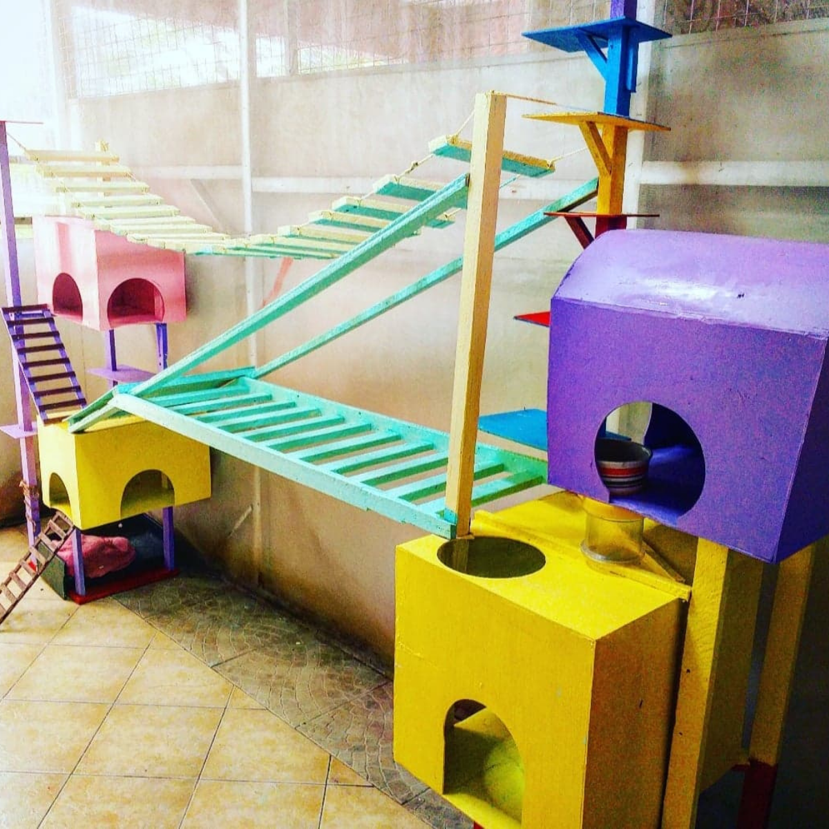 These towers and bridges will be so much fun for your kitty.