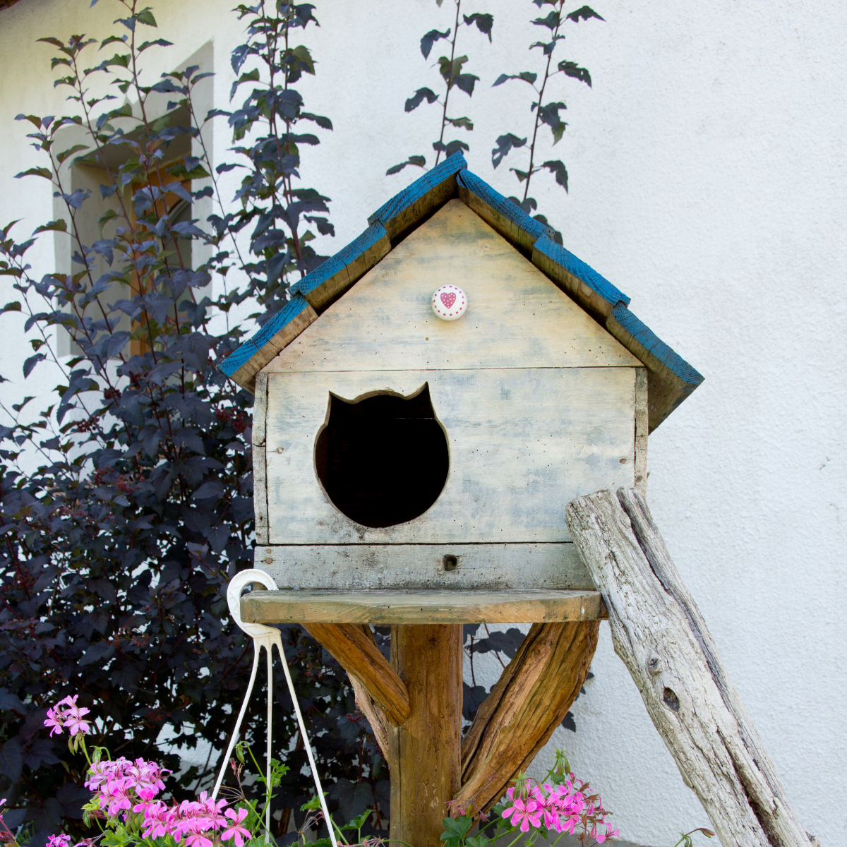 Repurpose a pallet for this cute little spot.
