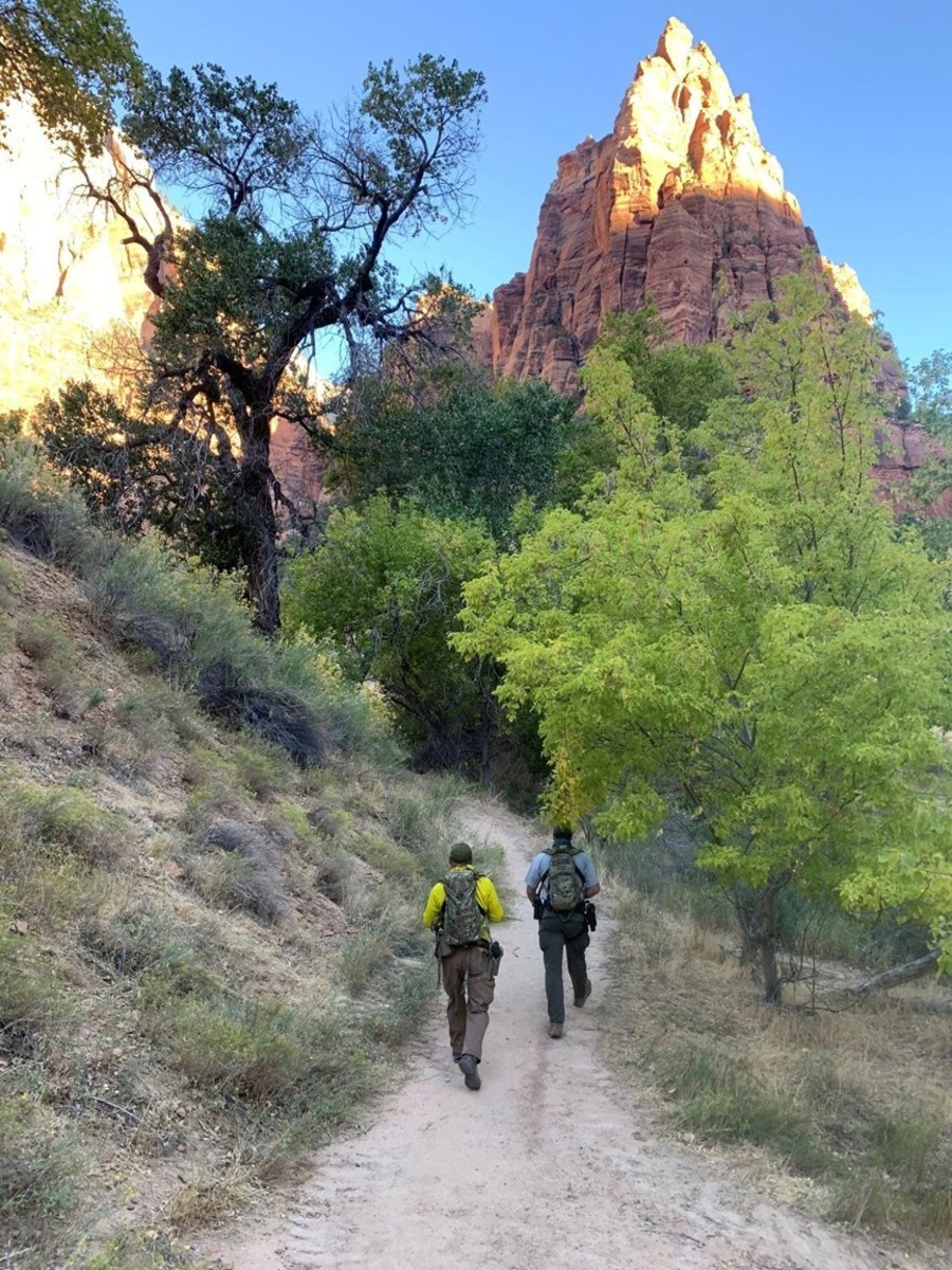 Searchers out in Zion National Park searching for Holly Courtier who vanished on October 6, 2020. Photo courtesy of Forest Service.
