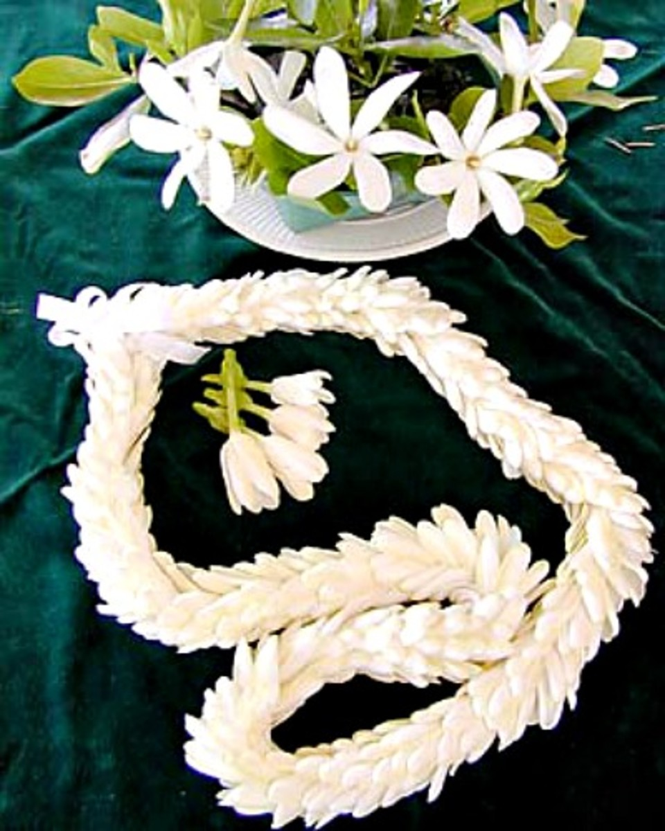 Lei Strung from Gardenia Buds Tutorial