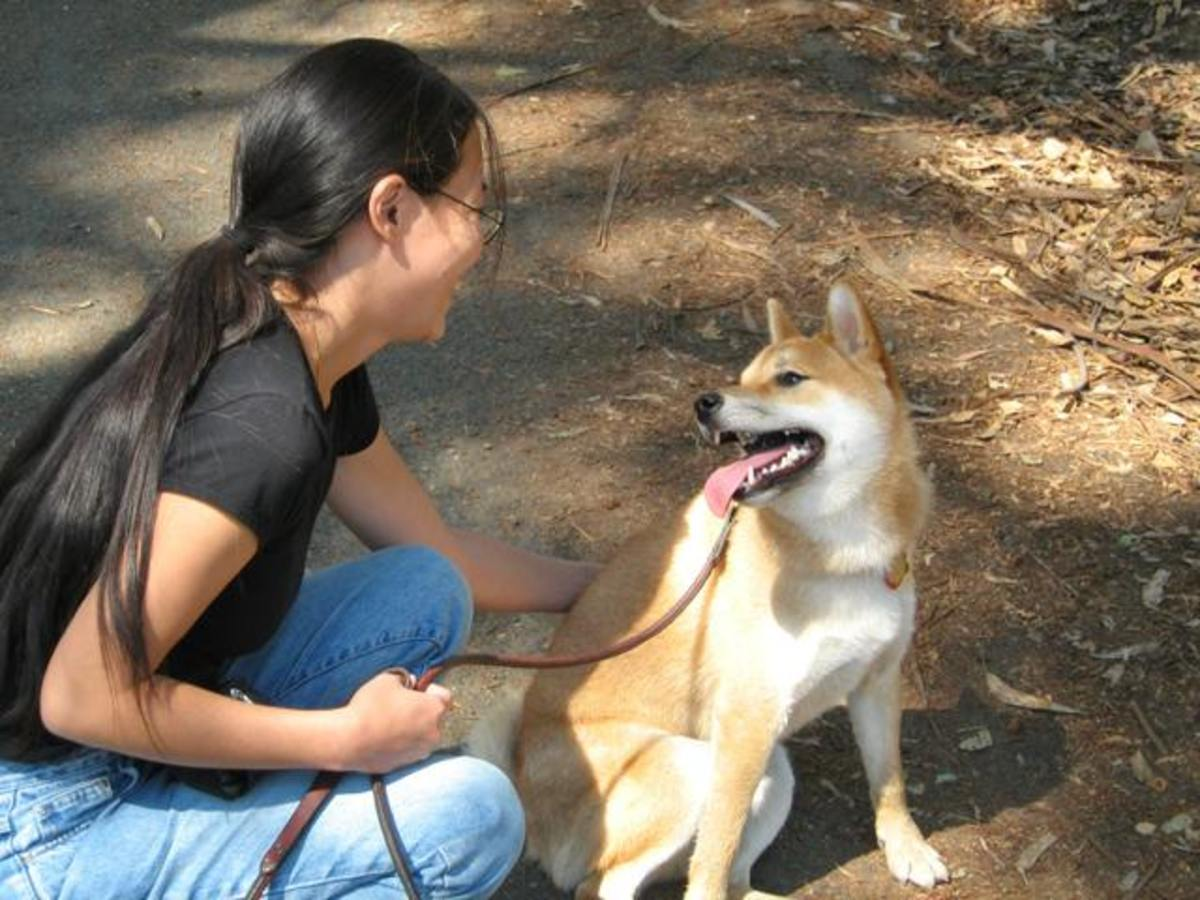 Not Cesar Millan's way - Loose leash walking, a happy experience for everyone.