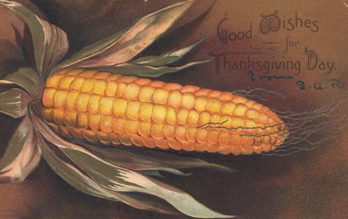 Free vintage Thanksgiving postcards: Corm