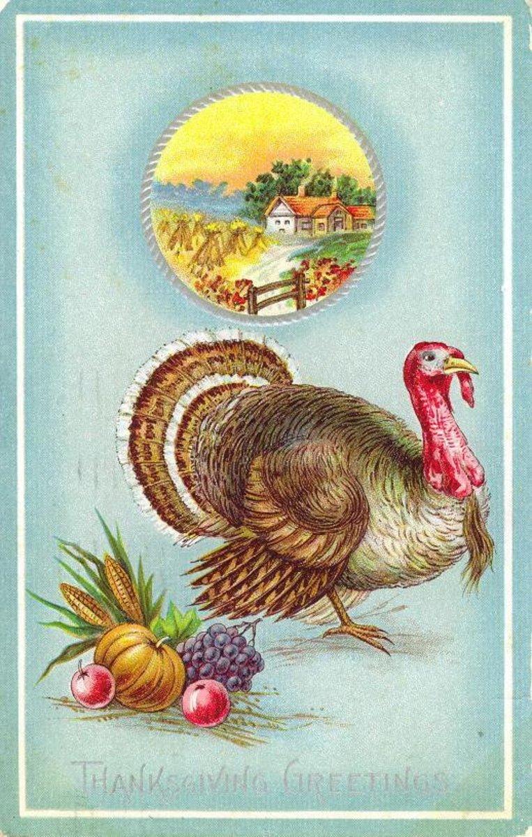 Free vintage Thanksgiving postcards: Turkey