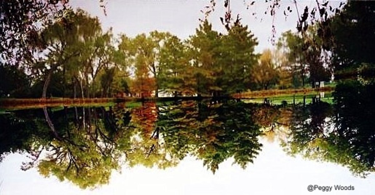Emporia, Ks - William Allen White Park Images - Peter Pan Memories
