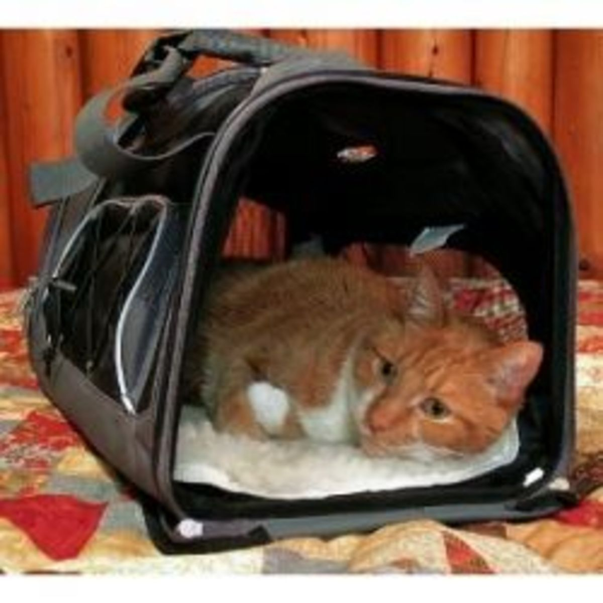 Comfy Cat Carrier for Travel