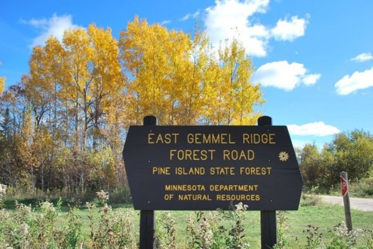 Forestry roads provide some great fall color tours.