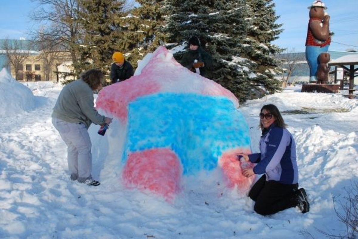 Ice Sculpture-Smokey Bear Park