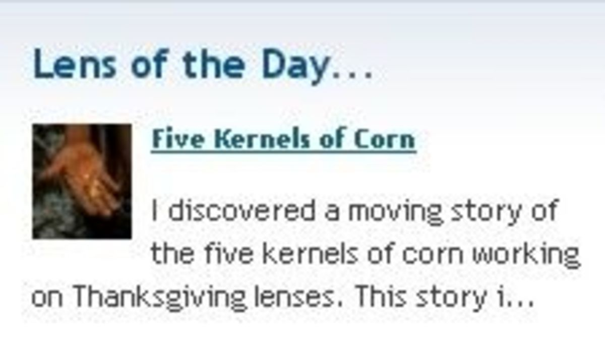 Lens of the Day November 4, 2009