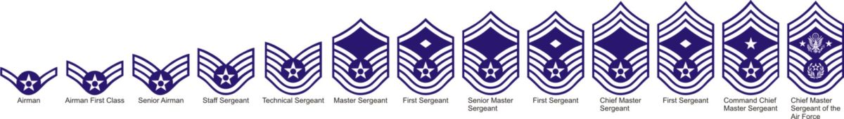 U.S. Air Force Patches vectored.