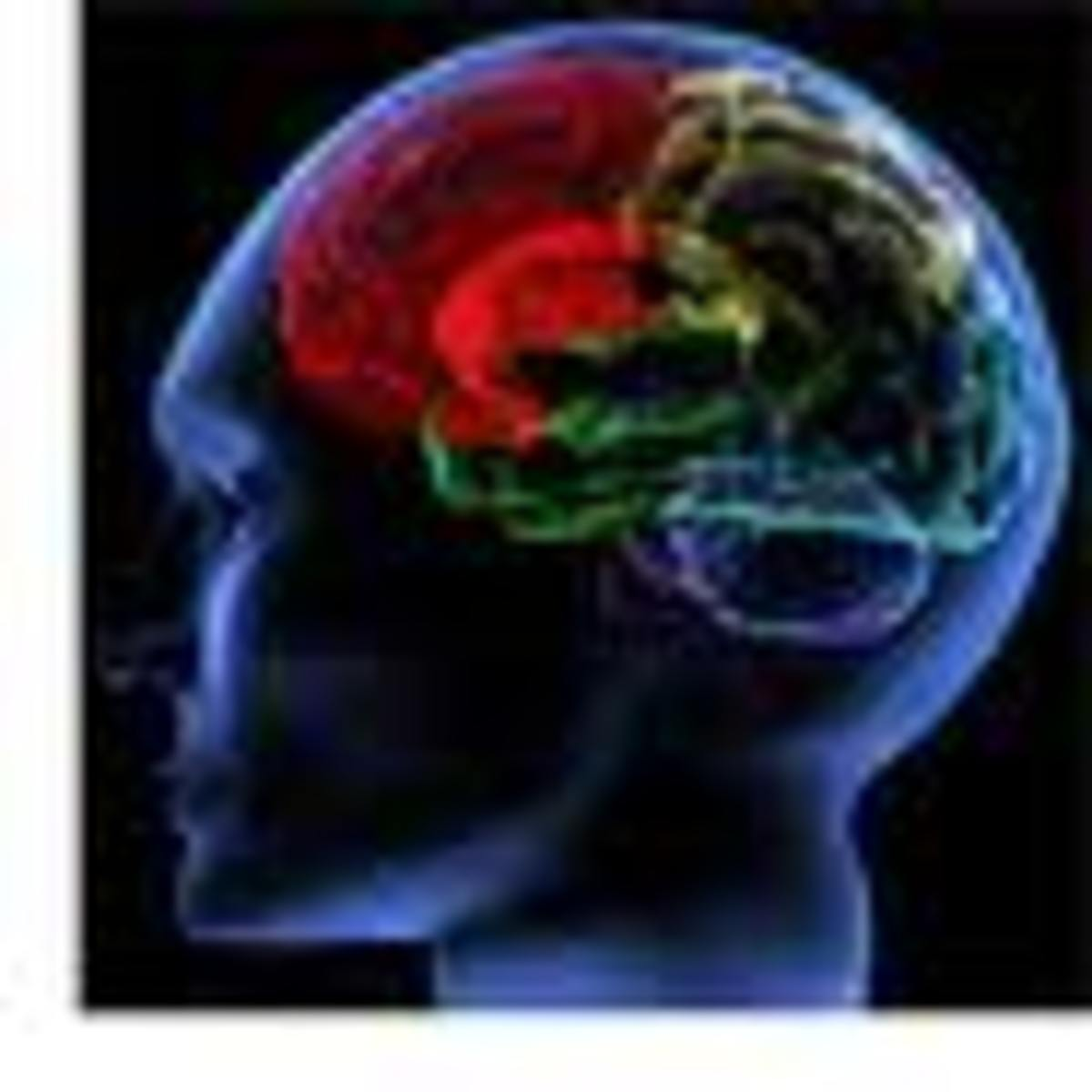 psychology-101-what-is-intelligence