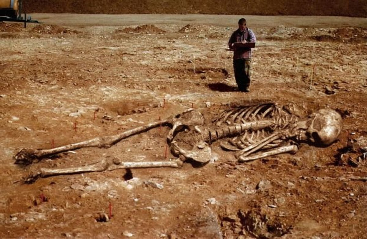 A human skeleton measuring eleven feet was found some years ago , near the border of East Pakistan