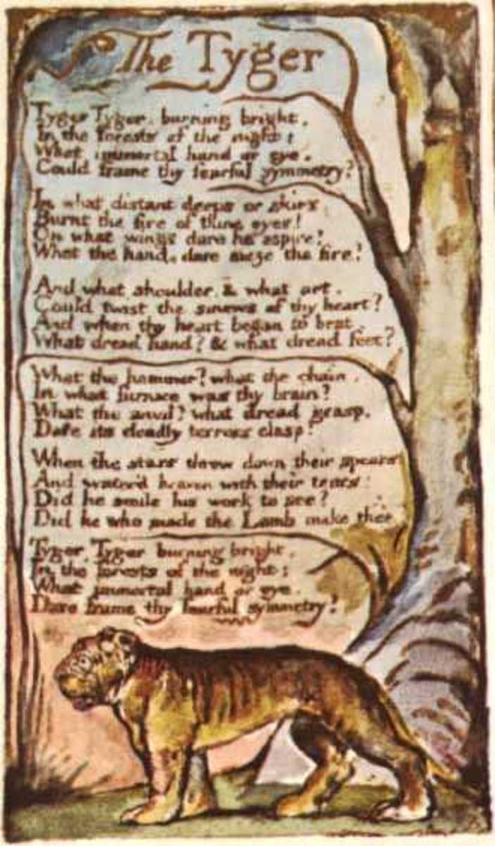 College World Literature Essay - William Blake Ponders the Source of Evil in