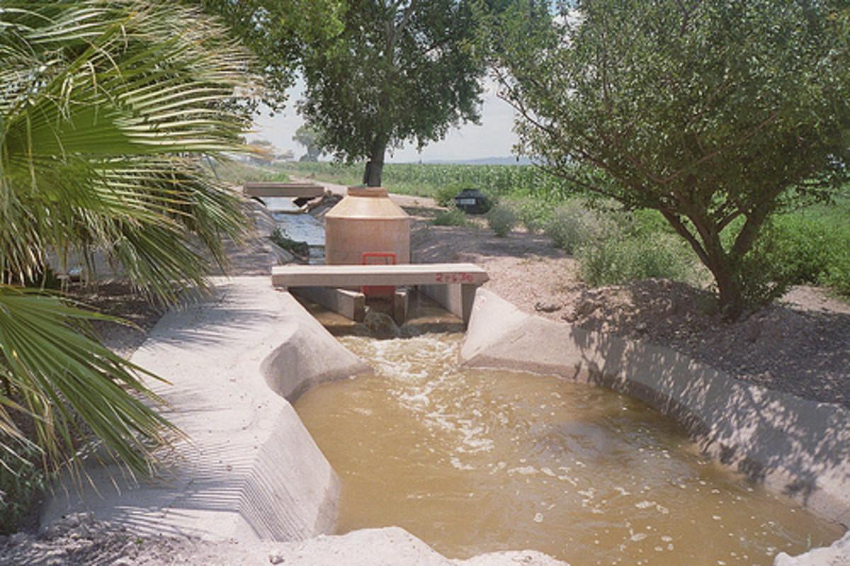 Delicias irrigation