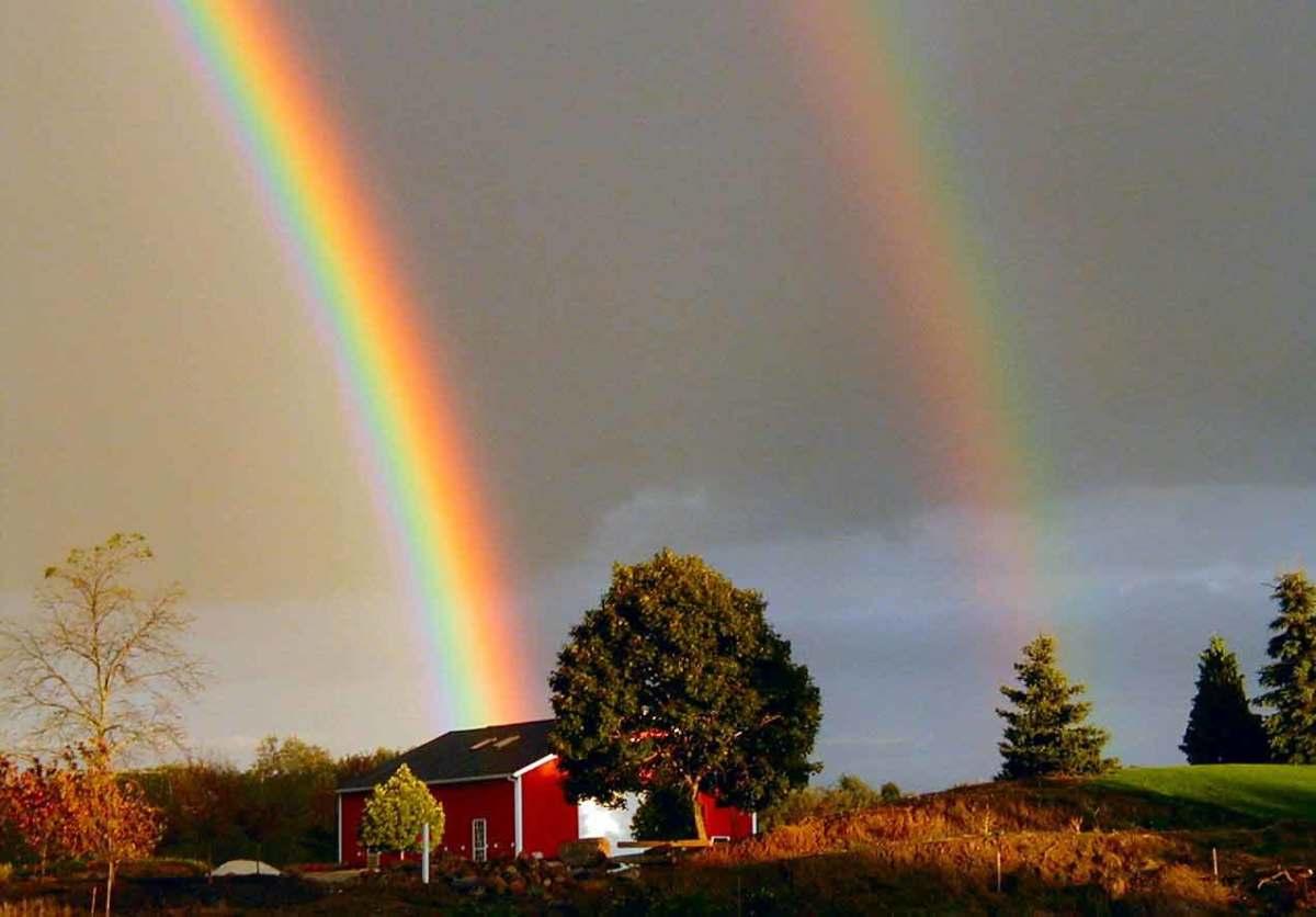 Rainbow, The Beautiful Phenomenon