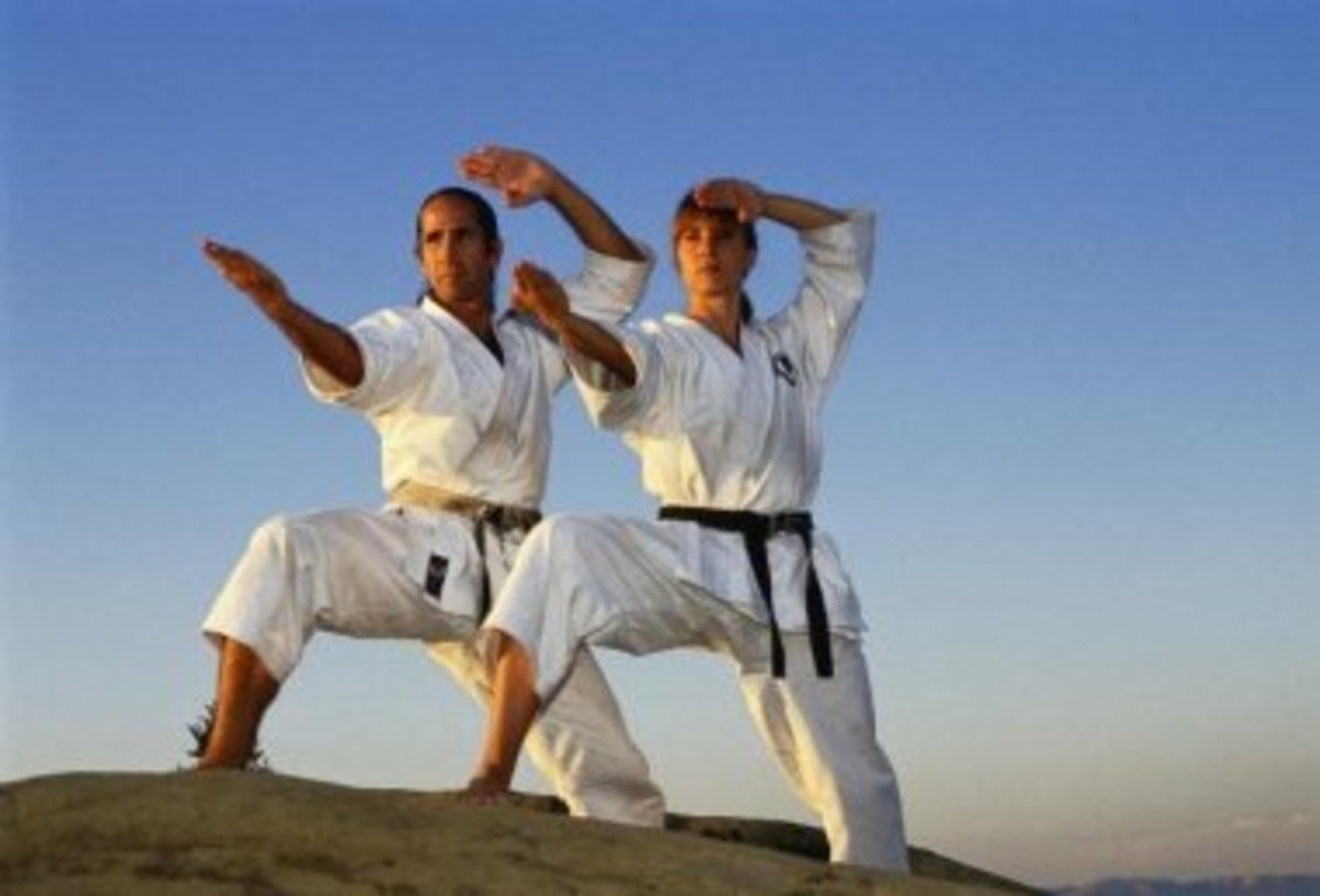 After the duration of kenpo x you'll feel like a martial arts master.