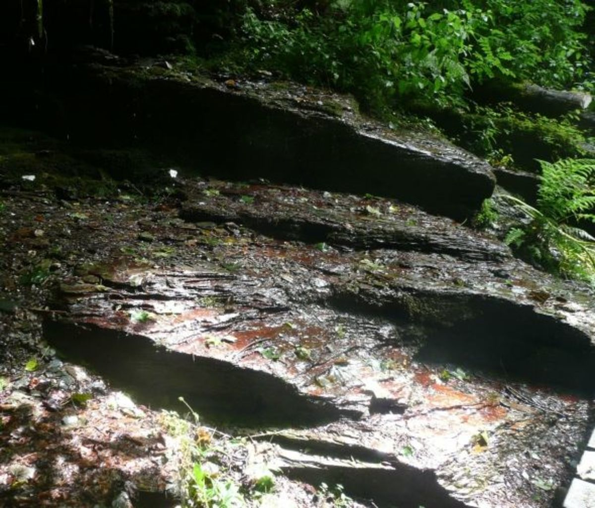 The beautiful steps that lead up to the Hermitage
