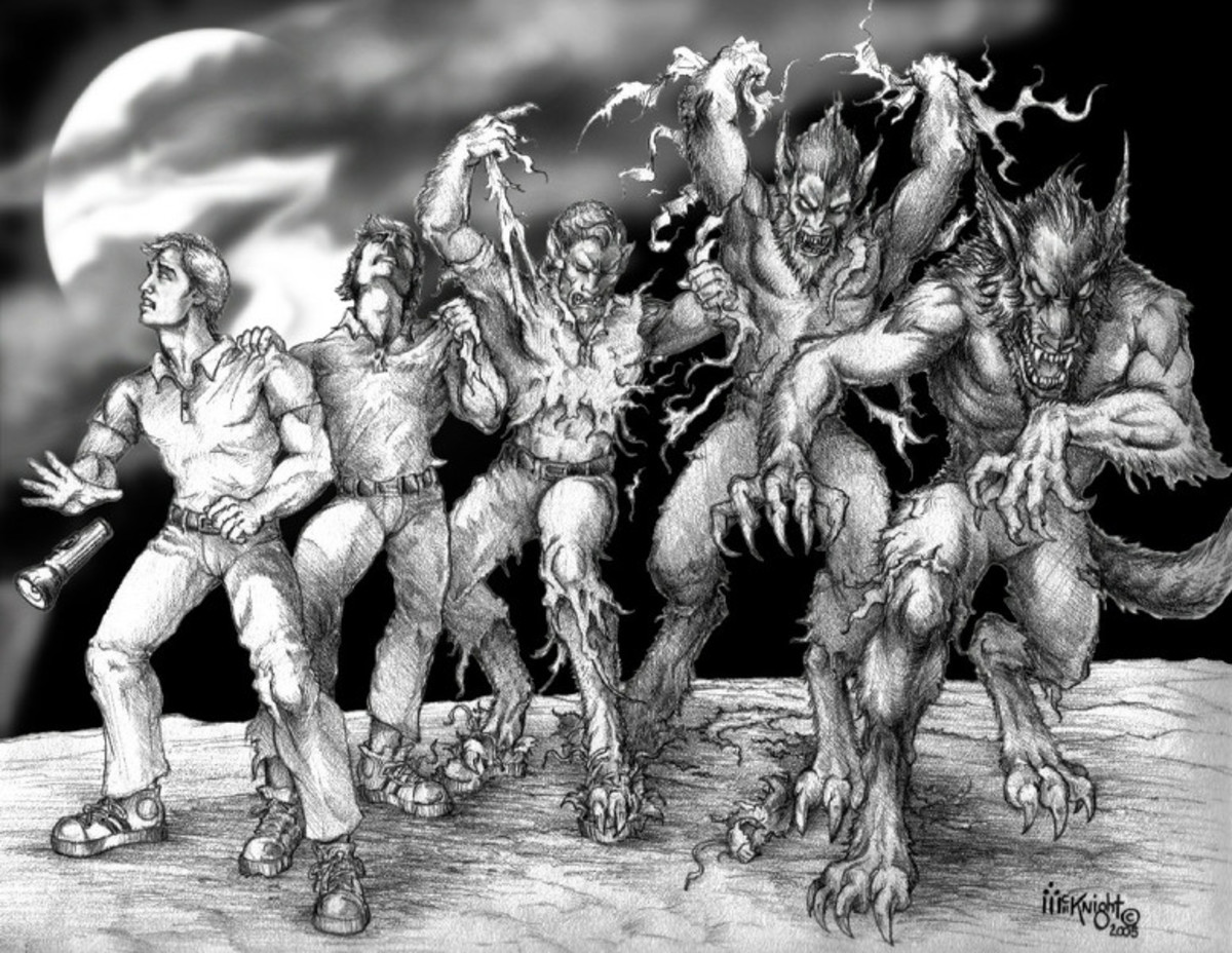 We Who Hunt Werewolves; the histroy of werewolf hunters