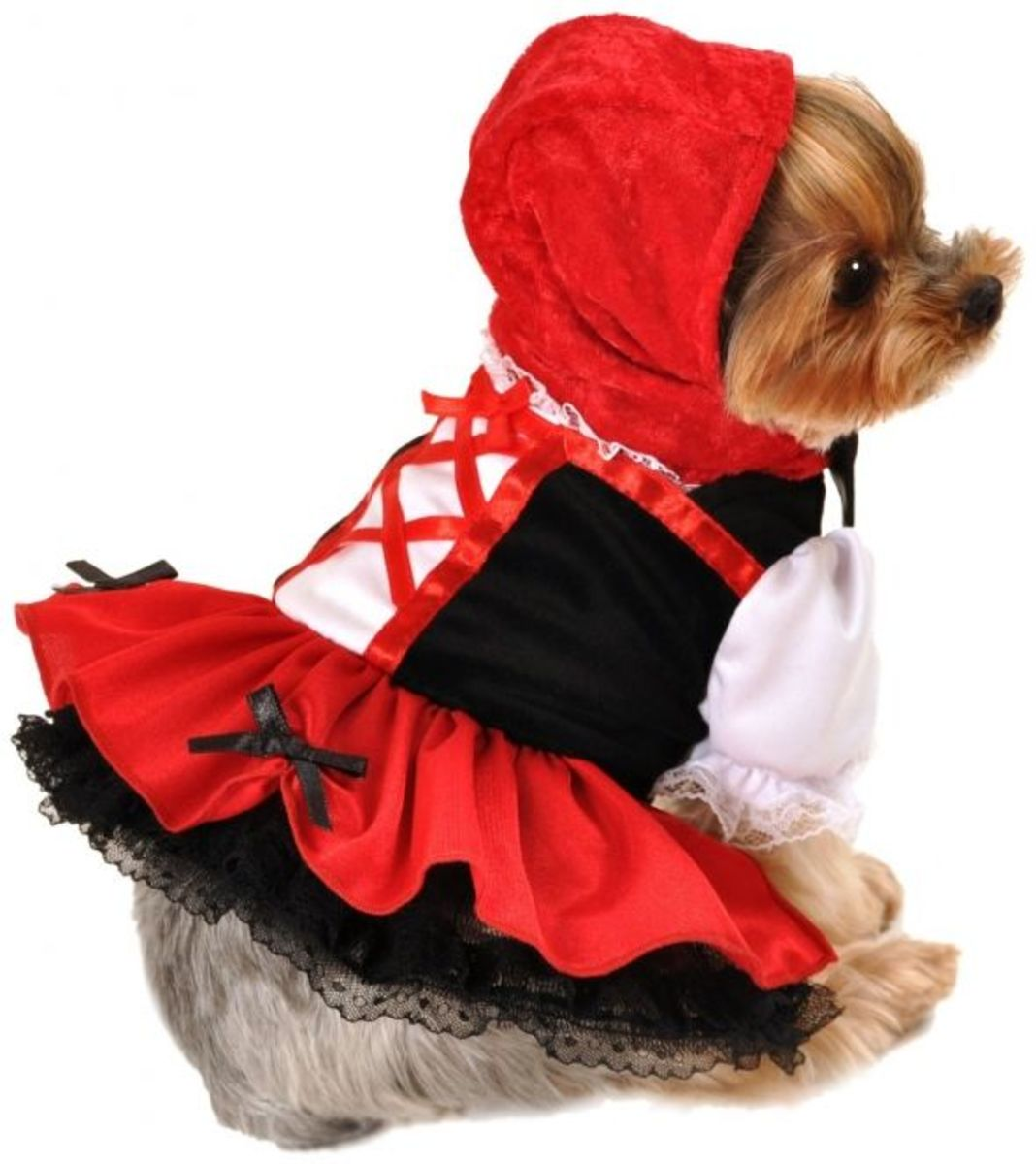 Little Red Riding Hood Pet Costume